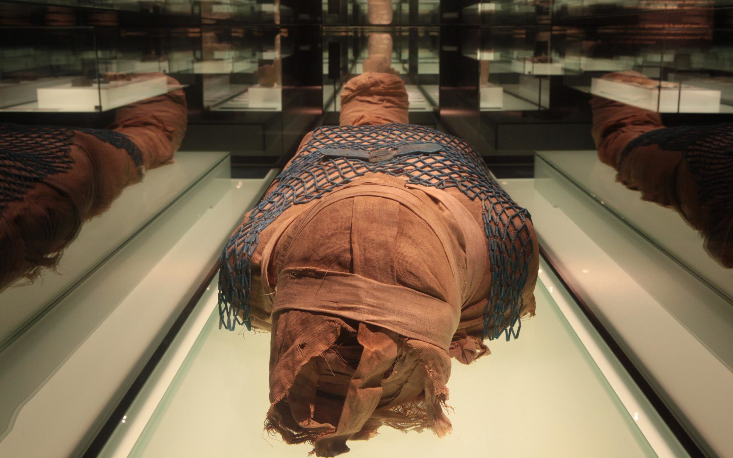 The Enigma of the Mummy